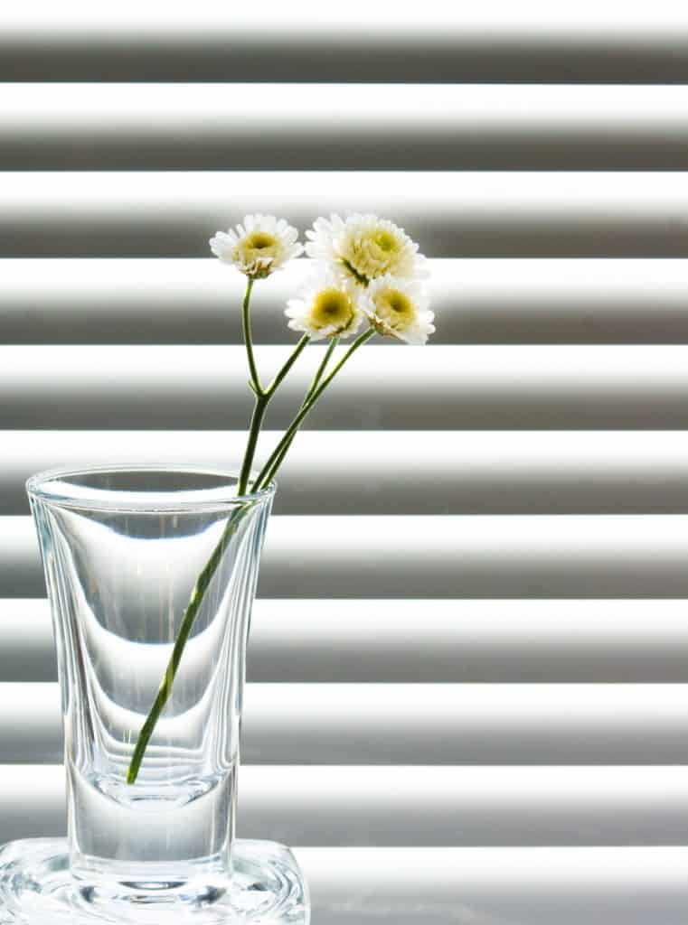 blinds indianapolis different types of window blinds